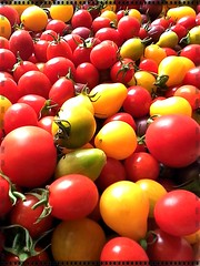 Biocherries (lobotomyzed) Tags: organic food tomatoes cherry france