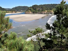 Big River Estuary in northern California (moonjazz) Tags: estuary california nature pine tree tides big river mendocino coast hiking photo landscape beauty reserve color inlet senic moonjazz flckr travel canon bay shallow low pristine