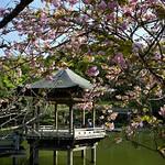 Narita Temple Park thumbnail