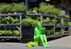 Going Green (Alex L'aventurier,) Tags: ilotopie montréal montreal marchéjeantalon vert green woman femme plante plant feuilles leaves art lire reading book livre public city ville urbain urban