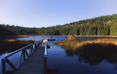 Silence (charhedman) Tags: mikelake goldenearsprovincialpark pier man alone veryquiet trees water grass blue asunnyday