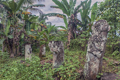 Megalithic stone statues - North Nias (Hannes Rada) Tags: indonesia nias island megalithic statues