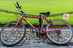 Ireland - Dublin - Trinity College - No bycicles here (Marcial Bernabeu) Tags: marcial bernabeu bernabéu ireland irlanda dublin dublín trinity college universidad university bicicleta bycicle garden jardín campus