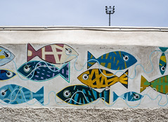 Puerta Del La Cruz, Tenerife, The Canary Islands, Spain. (CWhatPhotos) Tags: cwhatphotos fish art grafiti artistic painting fishes wall puerto del la cruz tenerife going holiday holidays photographs photograph pics pictures pic picture image images foto fotos photography that have which with contain olympus esystem four thirds digital camera lens 43 mft micro