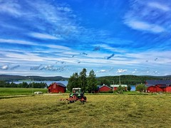 The Turning Point (mariajohansson) Tags: workofart norrland tavelsjö sweden fendt tractor hay harvesting