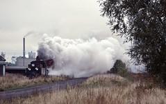 Loco Px48-1920  |  Sroda Wielkopolska  |  1997 (keithwilde152) Tags: px481920 sroda wielkopolska pkp poland 1997 narrow gauge railway sugar factory industrial mixed train steam locomotives outdoor autumn