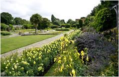The sunken garden (Brian Legg) Tags: wpg oldleggey garden priorypark southendonsea twelve