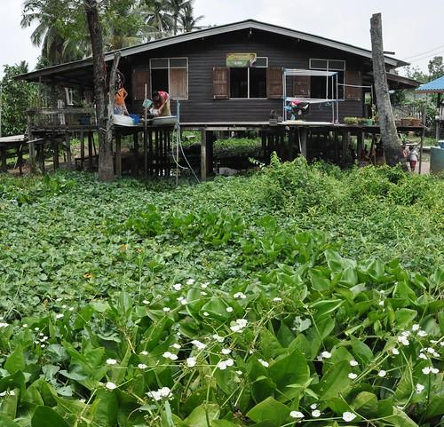 nonthaburi - koh kret - thailande 6
