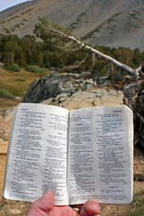 Psalms, Rocks, Trees (day_williams) Tags: sierras psalms meadow tree trees forest rock rocks twinlakes california bible holybible christianity nature