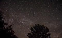 Ciel d'étoile (christophe.beydon) Tags: ciel campagne campaign crépuscule nikon nature noir night arbre france french voix lactée 1855 d7100 longue pose soir