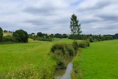 The Brook - Der Bach (ivlys) Tags: rheinlandpfalz berghausen dörsbach bach brook landschaft landscape wiese meadow himmel sky wolken clouds natur nature ivlys