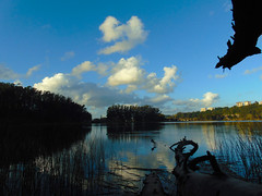 DSC07058 (llicela) Tags: view outdoor outside sky clods cielo nature reflejo laguna lagunagrande cloud heaven tree paisaje domingo park sonydsch300