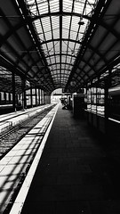 . (LeZinck) Tags: blackandwhite black white bnw sw schwarzundweis schwarz weis train trainstation light glass artistic architecture station muster travel reflection art camera mobile template shadow germany bahnhof noir hands lighting shadows monochrome blurry blur contrast modern sunlight sun texture suw moment olympus 150mm einfarbig dof houses city trees berlin day perspective photography weird diagonal