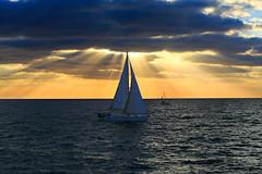 Sailing at sunset - Tel-Aviv beach (Lior. L) Tags: sailingatsunsettelavivbeach sailing sunset telaviv beach sailboat telavivbeach sea seascapes travel travelinisrael israel clouds cloudysunset