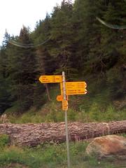 IMG_20170723_154634 (Puntin1969) Tags: svizzera montagna luglio cantonvallese segnale ponte telefonino