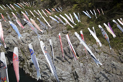 Koinobori over the Yoshino River in Shikoku (dckellyphoto) Tags: japan asia 日本 にほん tokushimaprefecture 2017 japan2017 koinobori yoshinoriver shikoku 徳島県 四国 鯉のぼり river hanging windsock streamer rocks