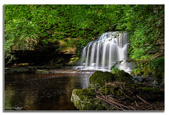 Cascade (peterwilson71) Tags: landscape nature water river travel rock leaf wood stone waterfall cascade stream flow moss wet wild