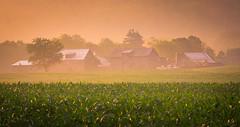 Hazy Awakening (VermontScapes) Tags: farm barn early morning stowe vt vermont corn haze fog foggy pretty telephoto nikon 200mm f40 ai