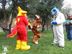 DSC00179 (Thanriu) Tags: fursuit chile meet junta furry santiago friends amigos canid monster avian ave canino monstruo badge angel dragon parrot artic wolf yerik dog