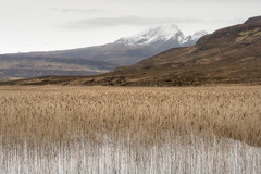 Overlap (jellyfire) Tags: bendamph distagont3518 elgol february highlands landscape landscapephotography scotland sony sonya7r torridon winter ze zeissdistagont18mmf35ze leeacaster wwwleeacastercom zeiss