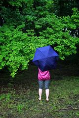 Colour Contrasts (El-Branden Brazil) Tags: umbrella rain green blue pink