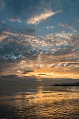Last night ⛅️ (Sonika Arora 604) Tags: vancouver vancity canada britishcolumbia beautifulbc beautiful explorebc explorecanada explorevancouver nikon nikonphotography nikonphotographer nikonphotographers