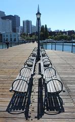 Vanish (Gunn Shots (Catching up)) Tags: hbm bench sanfrancisco vanishingpoint ocd ocdendorsed