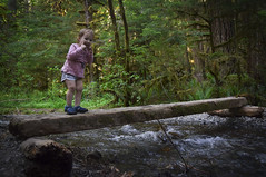 Happy Baby on the Trail (Nickay3111) Tags: staircase washingtonstate washington wa water rapidslooptrail rapids girl baby toddler hike hiking famiy family forest rainforest river trail pacificnorthwest outdoors nationalpark olympics olympicnationalpark