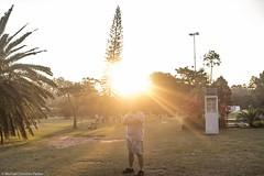 _MG_9973 (Michael Christian Parker) Tags: ibirapuera sãopaulo sun