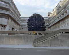 Southampton, 2017 ([Photom]) Tags: 120 6x7 75mm england format hampshire newtopographics places southampton uk film kodakportra160 landscape mamiya mediumformat rz67 shift urban wyndhamcourt brutalism concrete