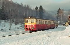 831 110 Horní Lipová (mrak.josef) Tags: èd 292 čd