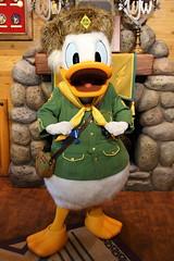 Donald Duck (sidonald) Tags: tokyo disney tokyodisneyland tdl tokyodisneyresort tdr donald greeting woodchuckgreetingtrail ディズニーランド ウッドチャック ドナルド グリーティング