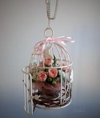 Per una bimba bellissima (Aellevì) Tags: roselline gabbia nido nastro composizione aellevì vola nata nascita libera libertà fioccorosa benvenutarosarachel