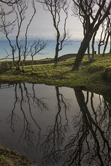 Fife and Aberdour (ginger_scallywag) Tags: canon 7d photoshop snow drops oldpier barn trees shoreline pittenweem fife reflection sunset beach aberdour inchcolmisland northsea cs6 camboestate