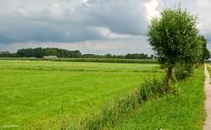 Landscape Nature (JaapCom) Tags: jaapcom landscape landschaft landed clouds wezep duivendans natural trees farmhouse feld holland dutchnetherlands igholland