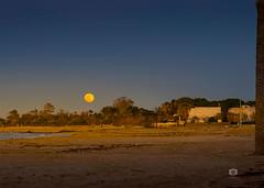 Moon rise (Michele Naro) Tags: sanvitolocapo trapani sicily sicilia sizilien sicile sea samyang85mmf14 italien italia italy italie iamnikon nikond610