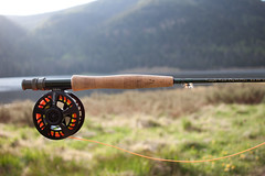 Colorado_20170603_188_15.jpg (Austin Irwin Moore) Tags: colorado fishing bw flyfishing fly mountains forest lake