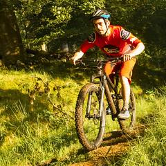 happy chap on a bike-2 (grahamrobb888) Tags: nikon nikond800 sigma20mmf18 sigma scotland summer sunny birnamwood birnam bicycle bicycles mountainbike bike bikers perthshire fun recreation holiday vacation woods woodland grass green