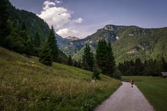 * * * (belboo) Tags: adventure bergeberg bergtour bergwandern giulianalps hike hiking jiulianalps mountains slovenia slowenien tour trek trekking triglav walking wandern starafužina radovljica si