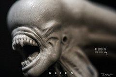 NEO20 (sith_fire30) Tags: alien aliens covenant defiance solaco nostromo lv426 neomorph xenomorph sculpture aves fixit sculpt studio sithfire30 giger ridley scott ripley colonial marines miniature