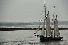 Iris (S.pT) Tags: mer eau sea vela ship sailboat sailing sail voilier vieuxgrement portnavalo morbihan golfdumorbihan