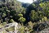 20170709-18-Bluff River Gorge walk (Roger T Wong) Tags: 2017 australia bluffrivergorge buckland rogertwong sel1635z sony1635 sonya7ii sonyalpha7ii sonyfe1635mmf4zaosscarlzeissvariotessart sonyilce7m2 tasmania bushwalk caves cliff erosion gorge hike outdoors sandstone tramp trek walk