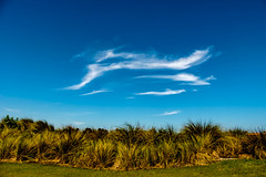 Grass and Clouds (Mr Noded) Tags: fujifilmxt1 wind cirrius golf xf18135mm13556lmoiswr clouds