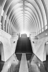 Rail cathedral (frank_w_aus_l) Tags: lüttich liège abstract architecture bw sw monochrome blackandwhite lines nikon d7000 arches stairs path reflection symmetry régionwallonne belgien be