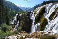 Pearl Shoal Waterfall (kaboem) Tags: jiuzhaigou tibetan naturereserve songpan sichuan china bluelakes snowpeaks valley waterfall unesco unescoworldheritagesite biospherereserve aba giantpanda pearlshoalwaterfall