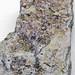 Fluoritized fenestrate bryozoans (Mississippian; near Cave-in-Rock, Illinois, USA)