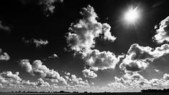 What a sunny day! (++sepp++) Tags: bayern deutschland landscape landschaft lechfeld graben de bavaria germany bw blackwhite monochrom sw schwarzweis einfarbig wolkig cloudy sonnig sunny gegenlicht backlight backlit sonne sun