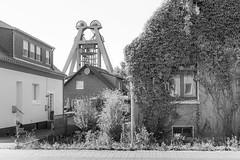 Das Ruhrgebiet (sw188) Tags: nrw bergkamen bw blackandwhite bergbau bergwerk zeche hausaden sw ruhrgebiet