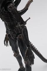 _DSC0981 (ZeroToyz) Tags: alien thedrone エイリアン revoltech 山口式 海洋堂 海洋堂山口式