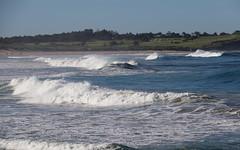 Dee Why & Long Reef (Poytr) Tags: deewhy nsw sydneyaustralia beach northernbeaches longreef surf waves bigwaves longreefgolfcourse ocean coast sea water shore